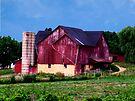 Huge Red Barn by Marcia Rubin