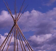 Heron and Tipi  by millymuso