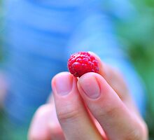 Raspberry by lalylaura