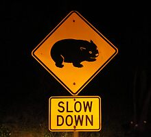 Wombat Warning Sign by Mark B Williams