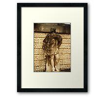 Inigo Jones Framed Print
