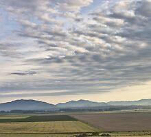 Skagit valley farmlands by Mike  Kinney