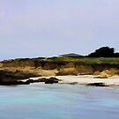 "On the Monterey Coast by Christine ""Xine"" Segalas"