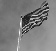 Windy Stars And Stripes by Dean Mucha