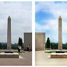 Memorial Arboretum Photo Manipulation by Jem Wright
