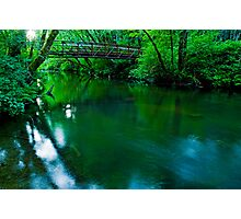 Over The Bridge And Through The Woods Photographic Print