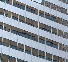 Window Panes by D.M. Mucha