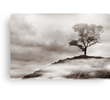 The Edge of Never Canvas Print