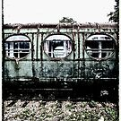 Decrepit Carriage by Peter Tachauer
