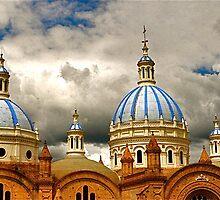 Catedral de la Inmaculada Concepción by Valerie Rosen