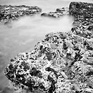 Rugged Shore by maxblack