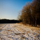 Foot prints in the snow - Sunrise by Daniel Berends