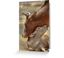 Mom & Newborn in a Blissful Moment Greeting Card