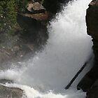 Alberta Falls by D.M. Mucha