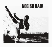 Kickboxer - Noc Su Kao! (White Warrior) by Cat Games Inc