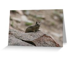 Little Creature In A Big World Greeting Card
