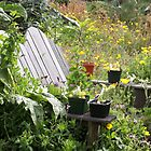Garden Seating by Denice Breaux