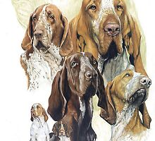 Bracco Italiano /Ghost by BarbBarcikKeith