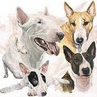 Bull Terrier with Ghost Image by BarbBarcikKeith