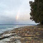 Rainbow over the Bay by waxyfrog