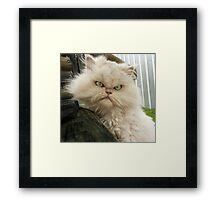 Princess Kendra ~ What Big Eyes You Have!!!! Framed Print