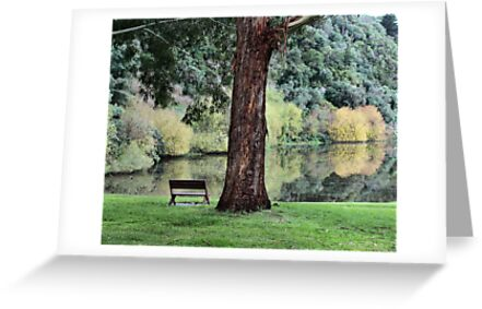 Time to Reflect by Lynda Heins