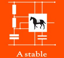 'A stable'  - Geek Slogan Tee Kids Clothes
