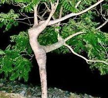 gymnastic tree  by jaZme