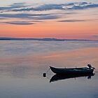 River Tay at Dawn by Panalot