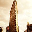 The Flatiron Building by Vivienne Gucwa
