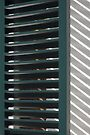 Window shutters, Den Haag by Lenka
