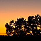 Colours of an Australian Sunset by Anthea Bennett