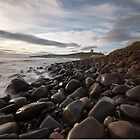 Dunstanburgh Castle from the North by chriscyner