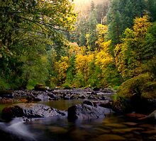 Lake Creek Fall Colors by Charles & Patricia   Harkins ~ Picture Oregon