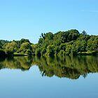 Mirror, Mirror  - Union Pond by christiane