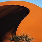 Curving Sands by Matthew Pugh