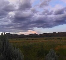 Sagebrush Country by © Betty E Duncan ~ Blue Mountain Blessings Photography