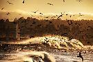 Explosion of Birds by Andrew Simoni
