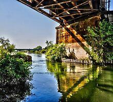 swollen American River, upstream of Discovery Park, Sacramento CA by Lenny La Rue, IPA