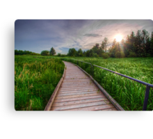 Boardwalk Through Wetlands Canvas Print