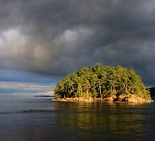 Georgeson Island  by TerrillWelch