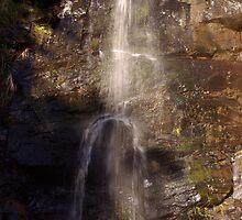 First Falls by Caroline  Lloyd