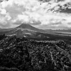 Kintamani in the Afternoon Sun by S T