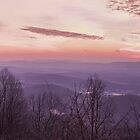 Panorama at Afton Overlook by Mary Jo Taft
