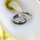 Wedding Rings by Lita Medinger