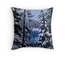 The Soft Stuff Throw Pillow