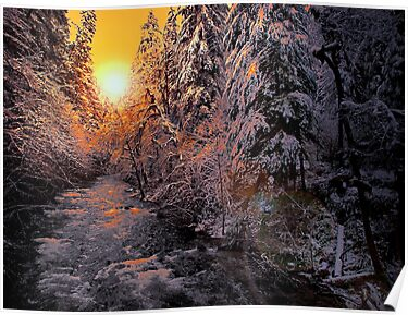 Glow On The Snow by Charles & Patricia   Harkins ~ Picture Oregon