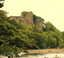 Barnard Castle  by webbo