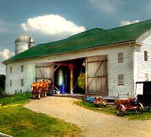 A Day on the Farm by Marcia Rubin