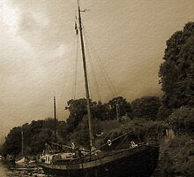 Old Boats at Allington Lock by Dave Godden
